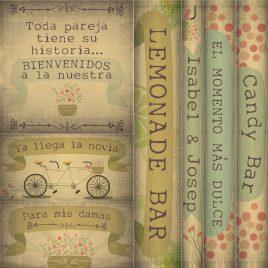 Carteles de Bici Vintage 2