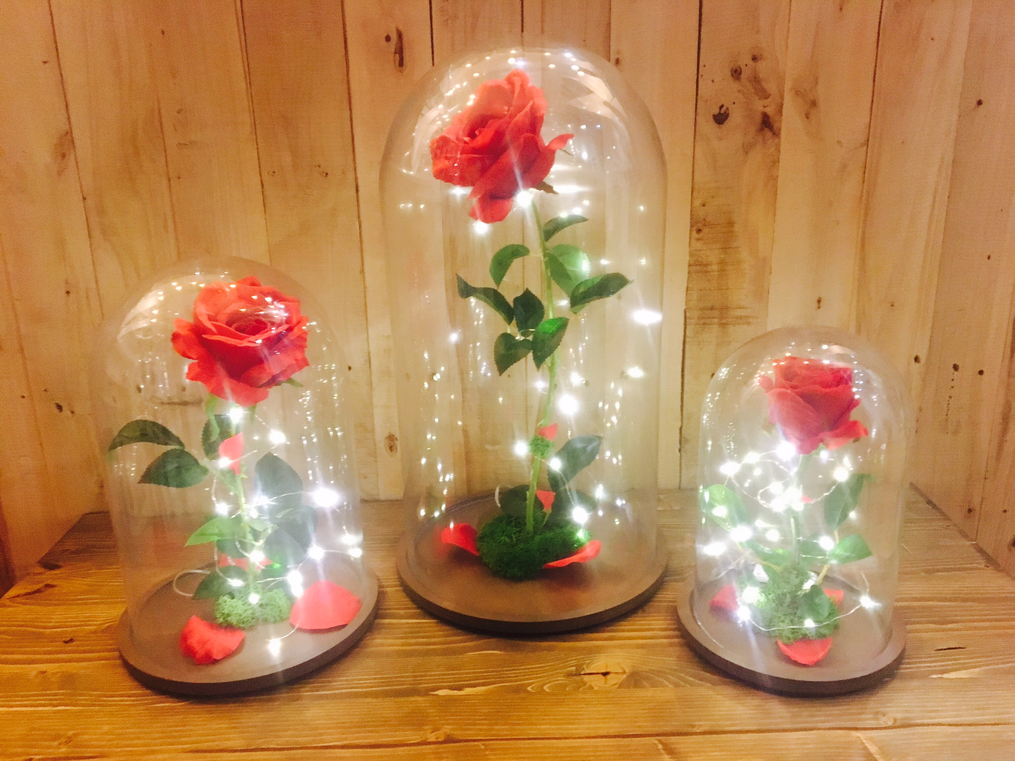 Rosa Encantada con luz